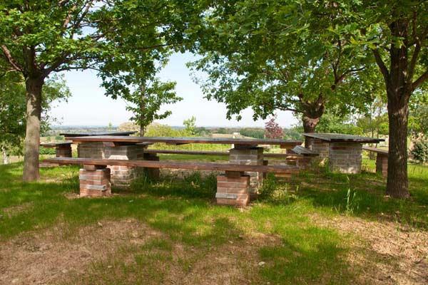Azienda agrituristica vitale - Area tavoli picnic barbecue roma ...